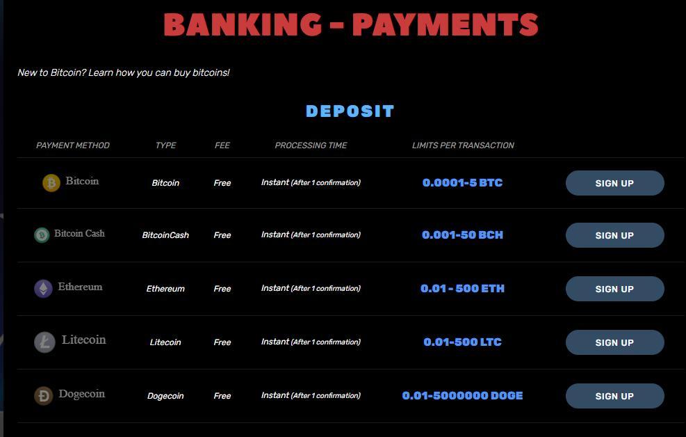 bitcoincasino.us banking payment options